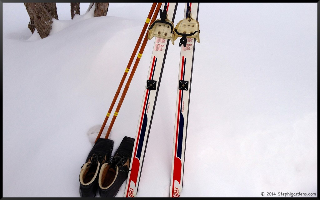 Trak cross country skis