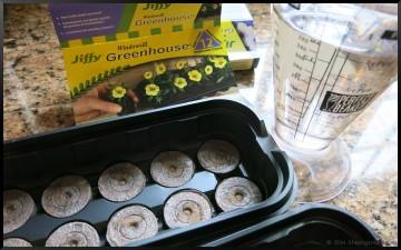 Jiffy seed starters