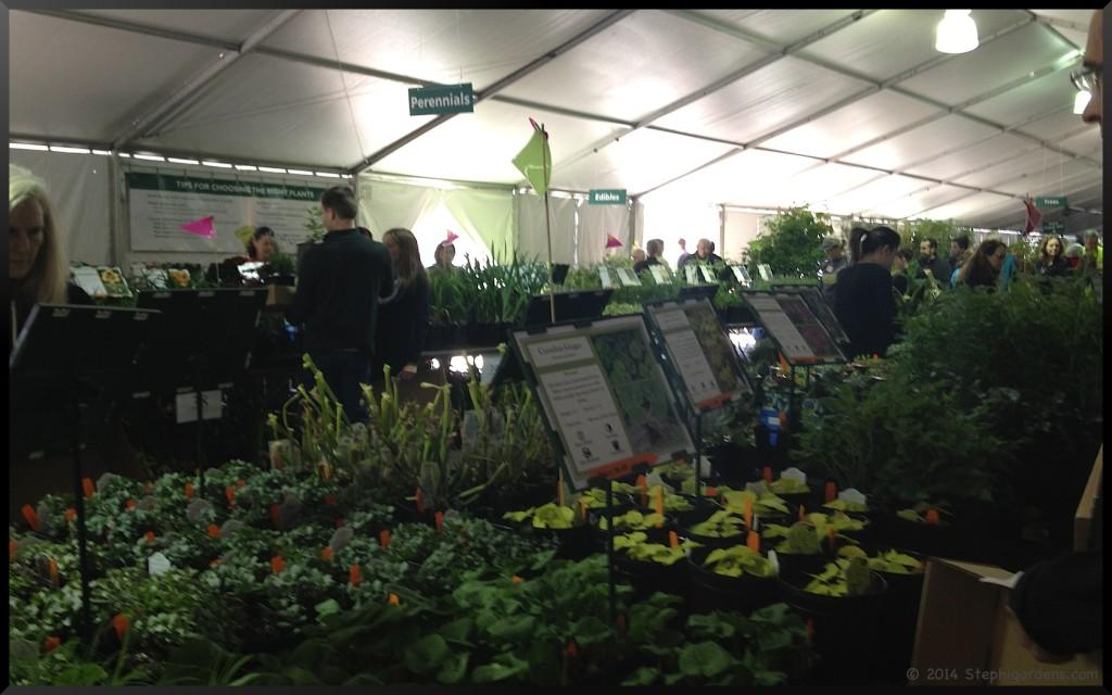 Morton Arboretum Plant Sale