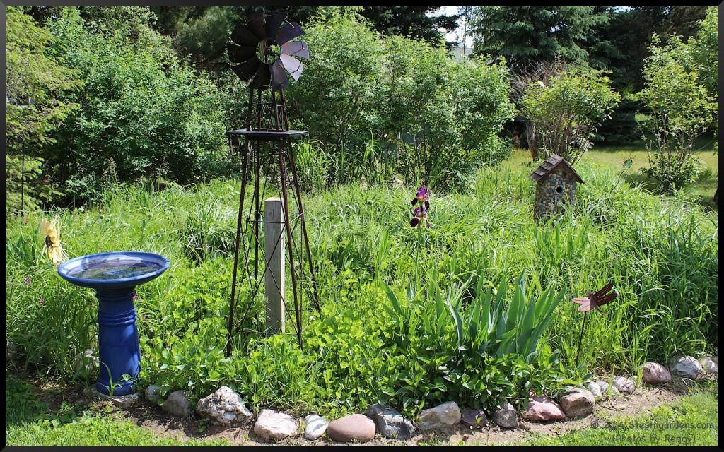 photos by peggy/stephi gardens