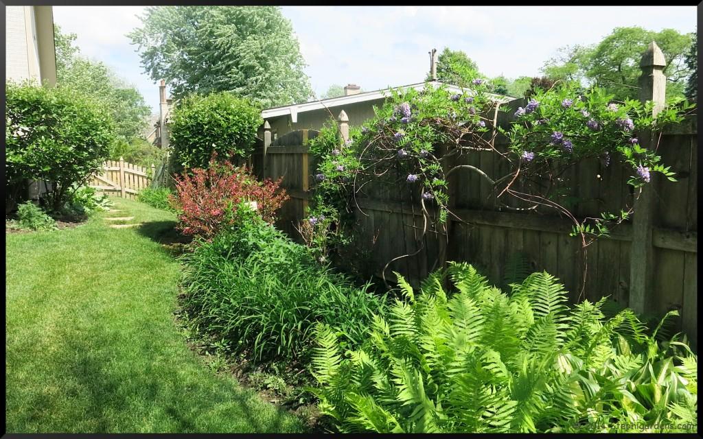 Stephi Gardens