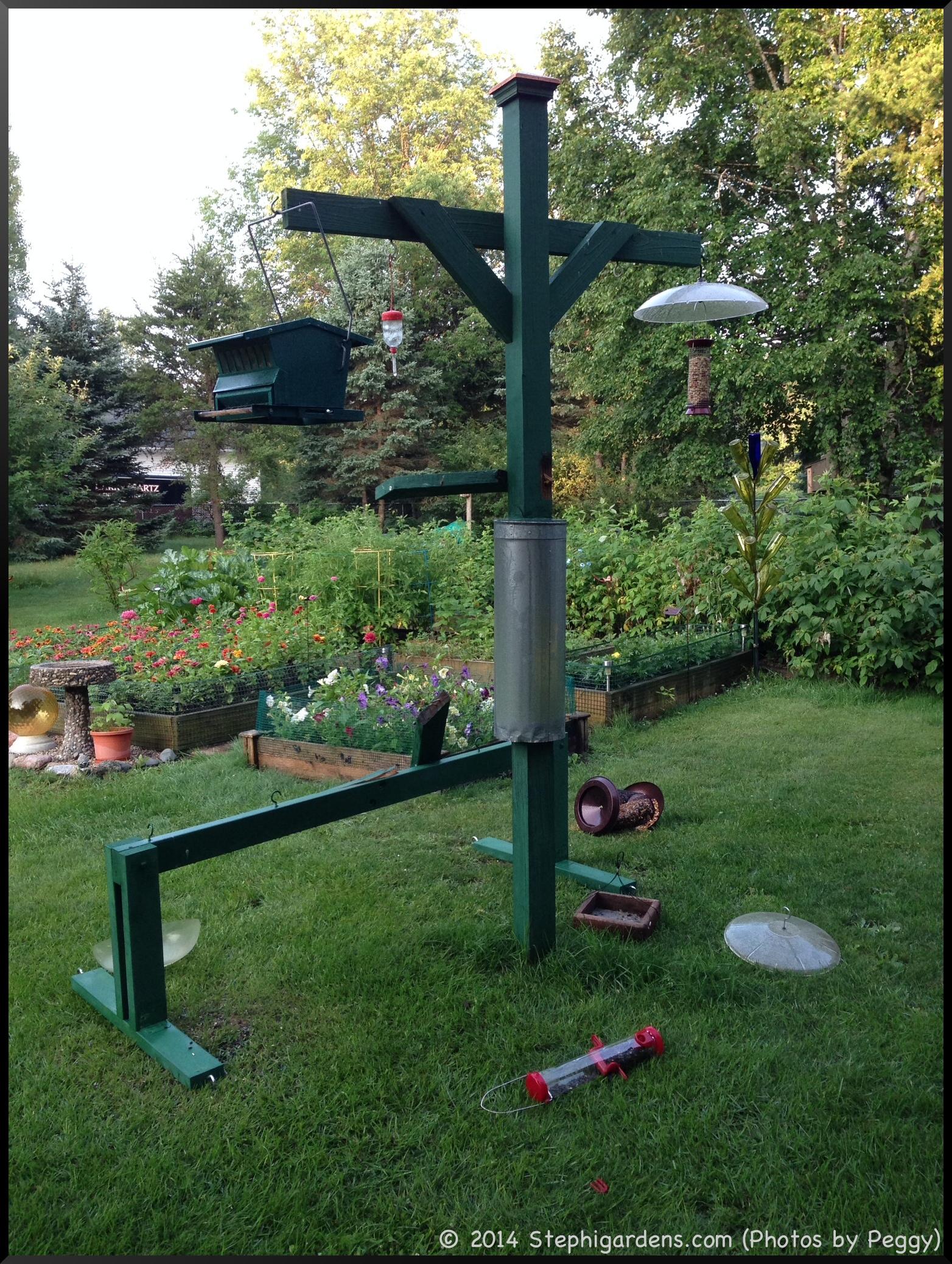 suet feeder stephi gardens