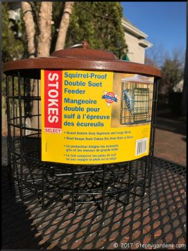 Stokes squirrel proof suet feeder